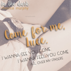 In the Dark Teaser #3 - #RentasticReads #BabblingChatterReads
