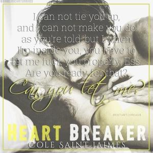 Heart Breaker Teaser #3 - #RentasticReads #BabblingChatterReads